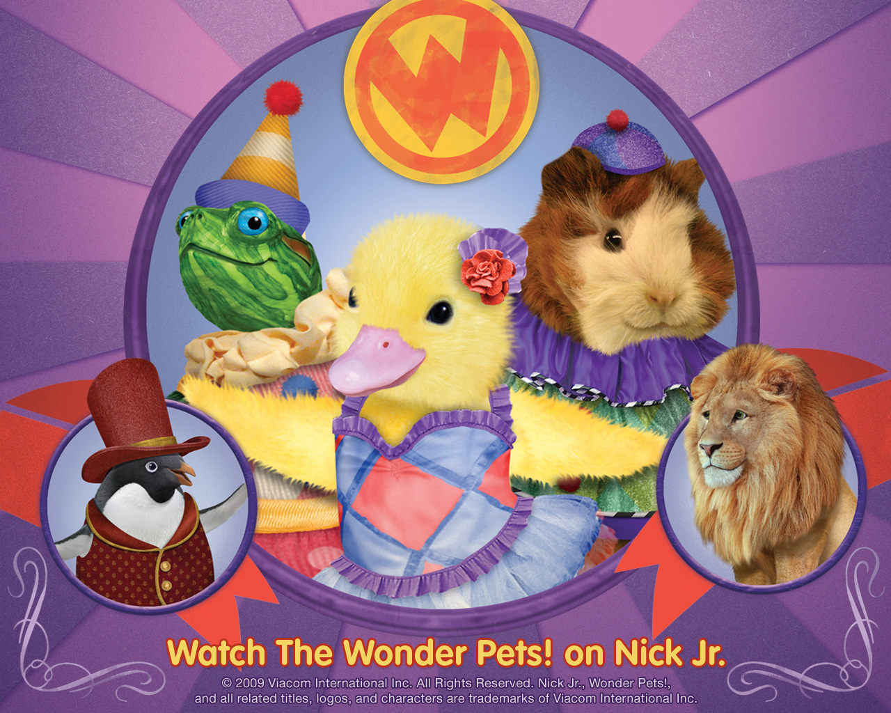 Wonder Pets Animated Cartoon