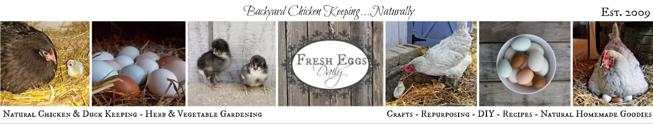 Fresh Eggs Daily®