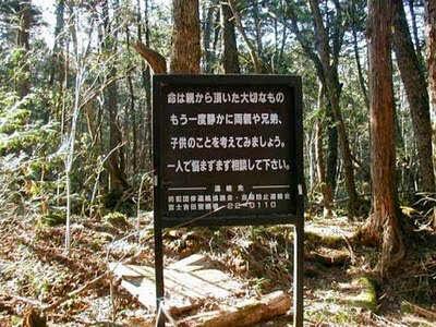 Ternyata Hutan Aokigahara Gunung Fuji Menjadi Tempat Bunuh Diri Terfavorit di Jepang