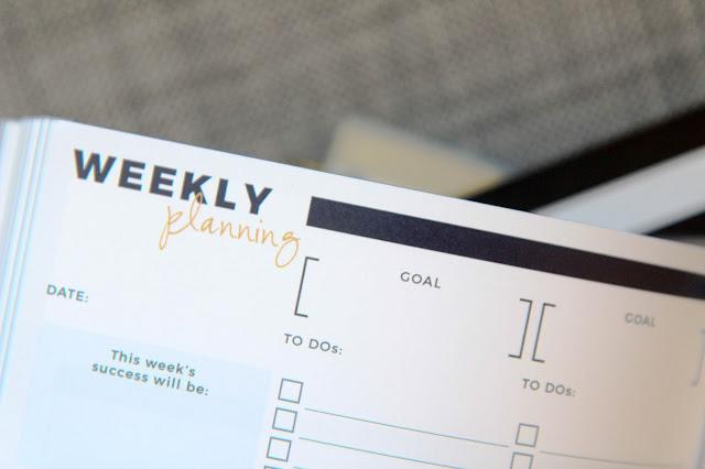 Top Down Planner Review & Walkthrough