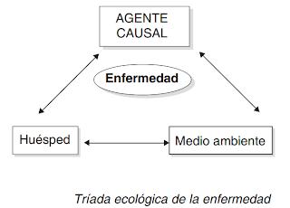 triada, ecologica,enfermedad