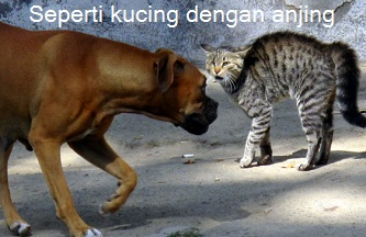 Anim Agro Technology Seperti Anjing Dengan Kucing