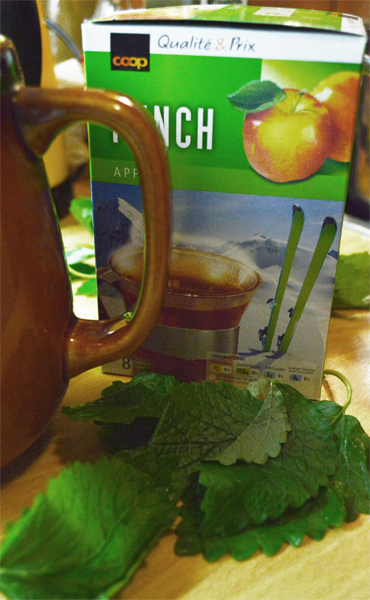 ingredients apple and mint punch