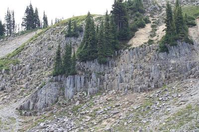 Columnar lava - Andesite Columns
