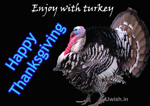 Happy thanksgiving wishes and greetings with turkey