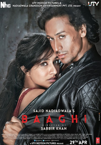 Baaghi 2016 Hindi 480p DVDRip 350mb