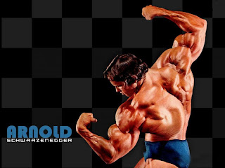 Arnold Schwarzenegger Wallpapers