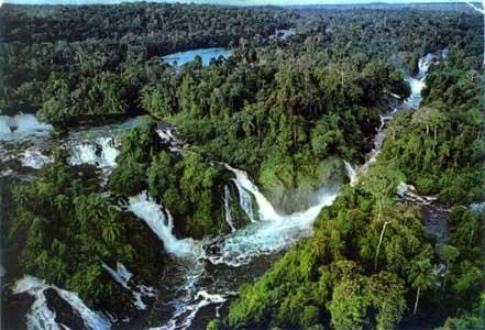 http://1.bp.blogspot.com/-2362ePFdP3E/ToOJbs0j8EI/AAAAAAAAEKE/F49_tZCKssA/s640/rainforest.jpg