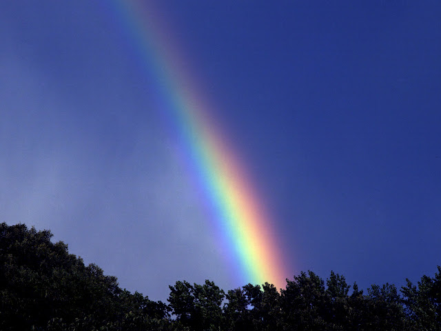 imagenes de arcoiris | fondos de paisajes