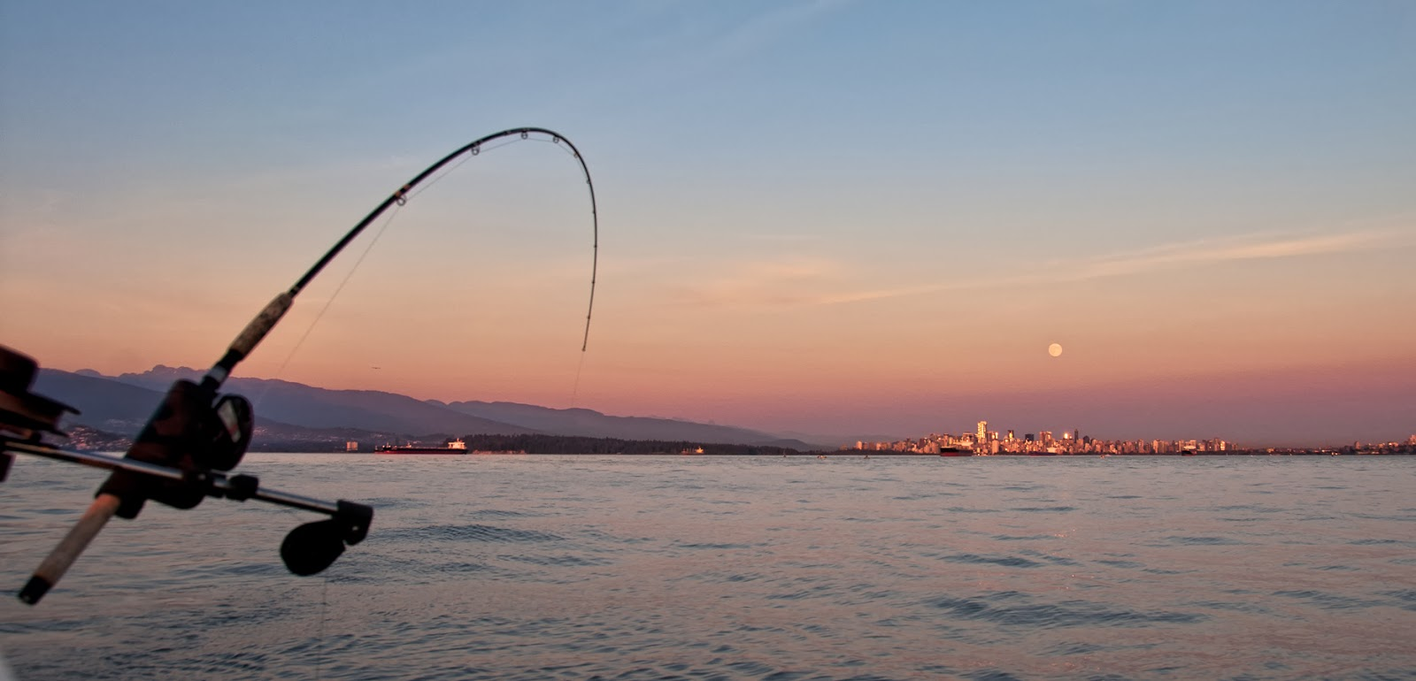 A Fishing Pole