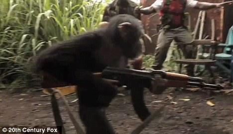 http://1.bp.blogspot.com/-23WgOu_O7Qk/TiiFUtE9a-I/AAAAAAAAB6E/rAWf0q-Nfm0/s640/simpanse+pegang+AK47.jpg