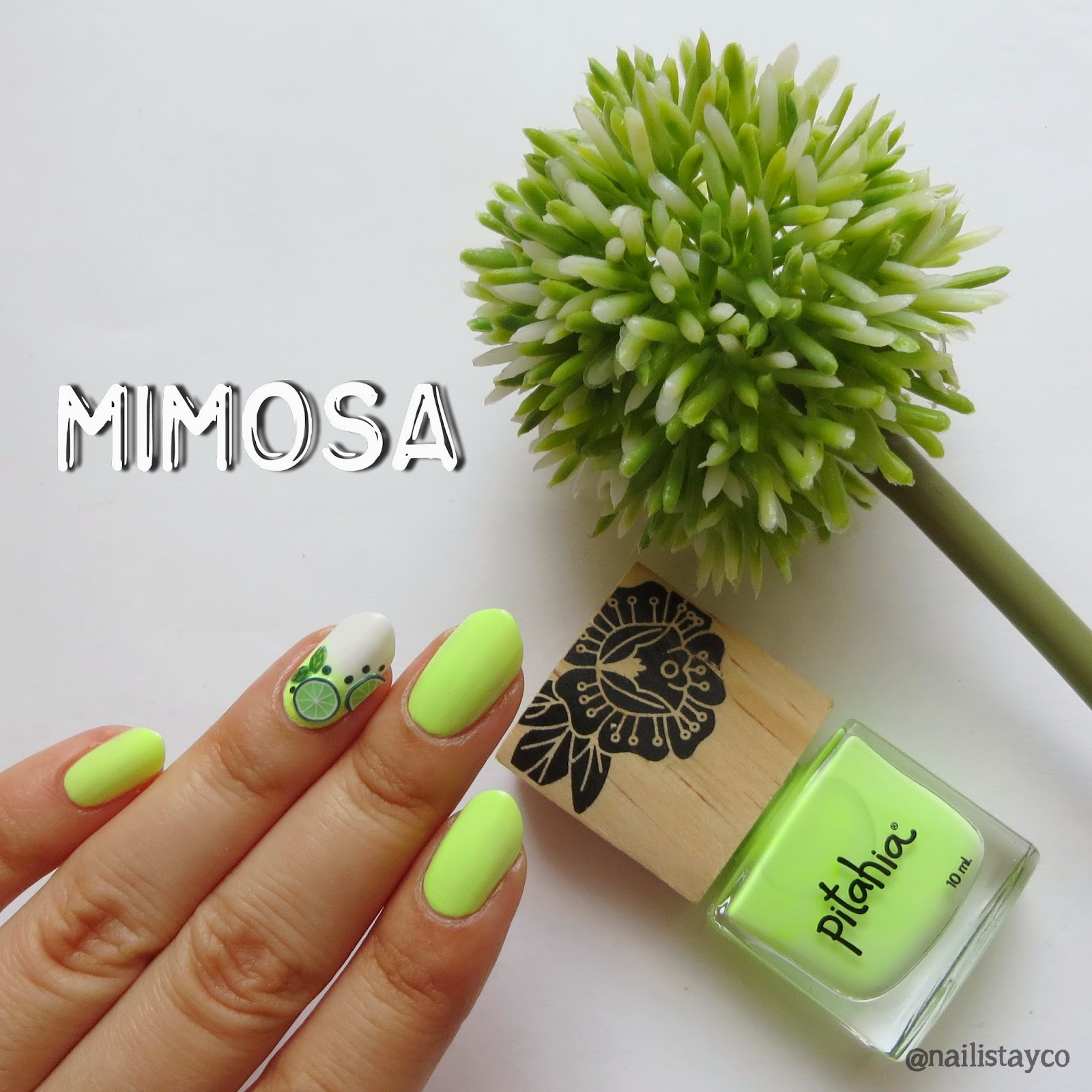 Nailista y co.: Mimosa de Pitahia