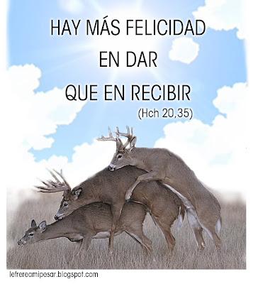 felicidad, Hechos, Biblia, Juan Pablo II