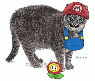 funny cat picture mario bros legendaris