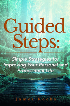 GUIDED STEPS