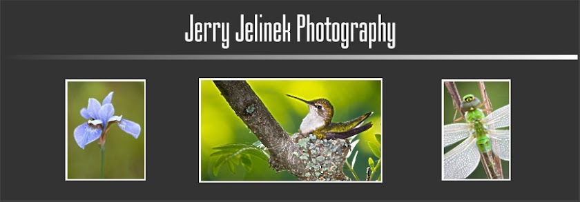 Jerry Jelinek Photography Blog