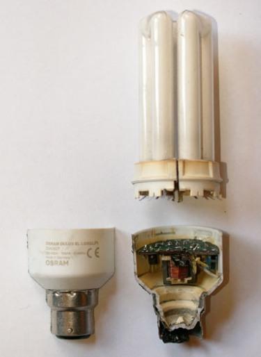 Freedom Light Bulb  See F L  Stripping The Light Fantastic