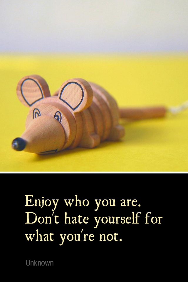 visual quote - image quotation for SELF-ESTEEM - Enjoy who you are. Don't hate yourself for what you're not. - Unknown