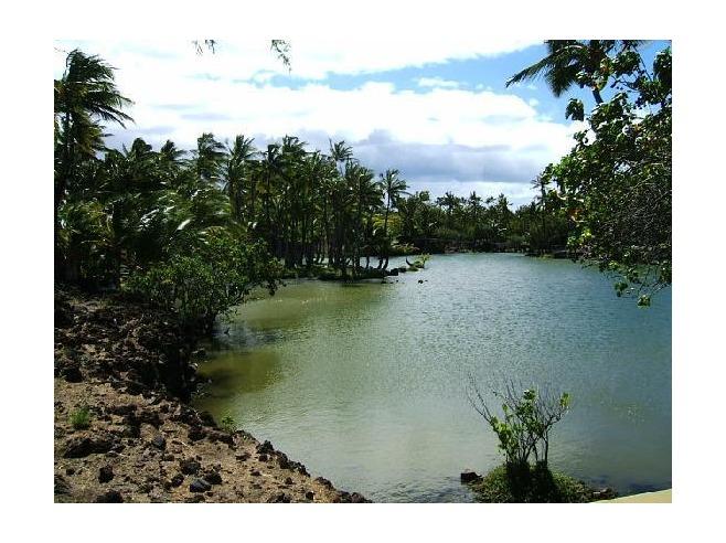 Historic hawaii foundation news december 2012 for Fishing big island hawaii