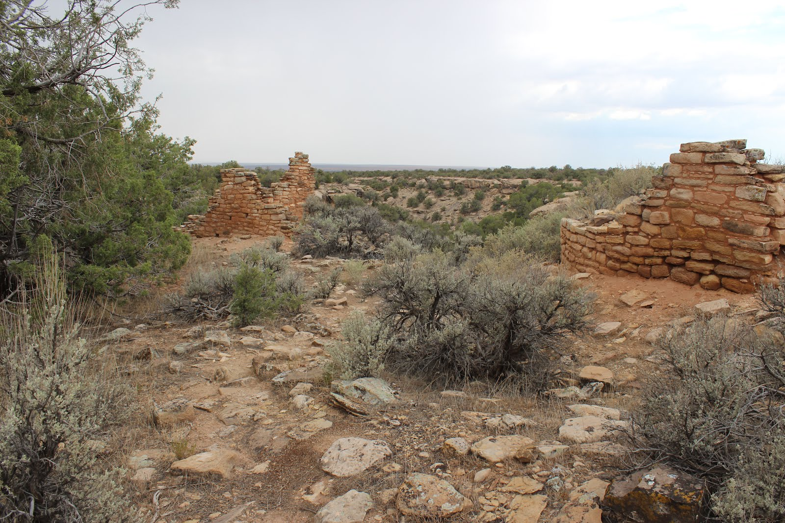 Just another dirt in the wall - Most Of The Hackberry Ruins Are Piles Of Rubble With A Few Wall Segments Still Standing Hackberry Canyon Is Thought To Have Been One Of The Most Densely