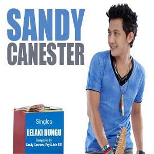 Sandy Canester - Lelaki Dungu
