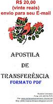 APOSTILA DE TRANSFERENCIA