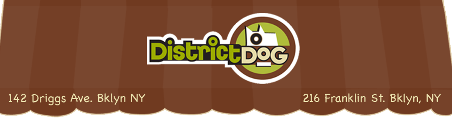 District Dog