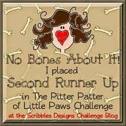 Scribbles Design Challenge
