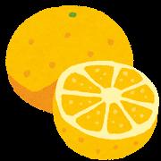 グレープフルーツ 丸ごと&カットのイラスト(フルーツ)