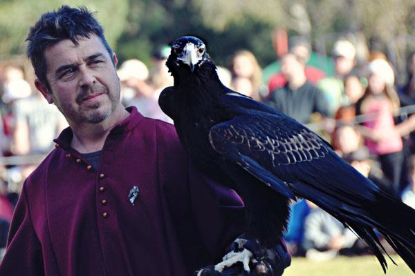 winterfest eagle
