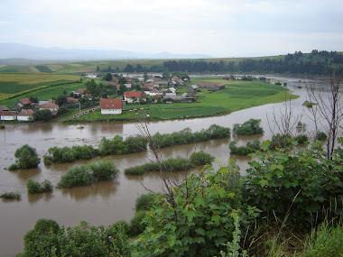 Inundații în 2005