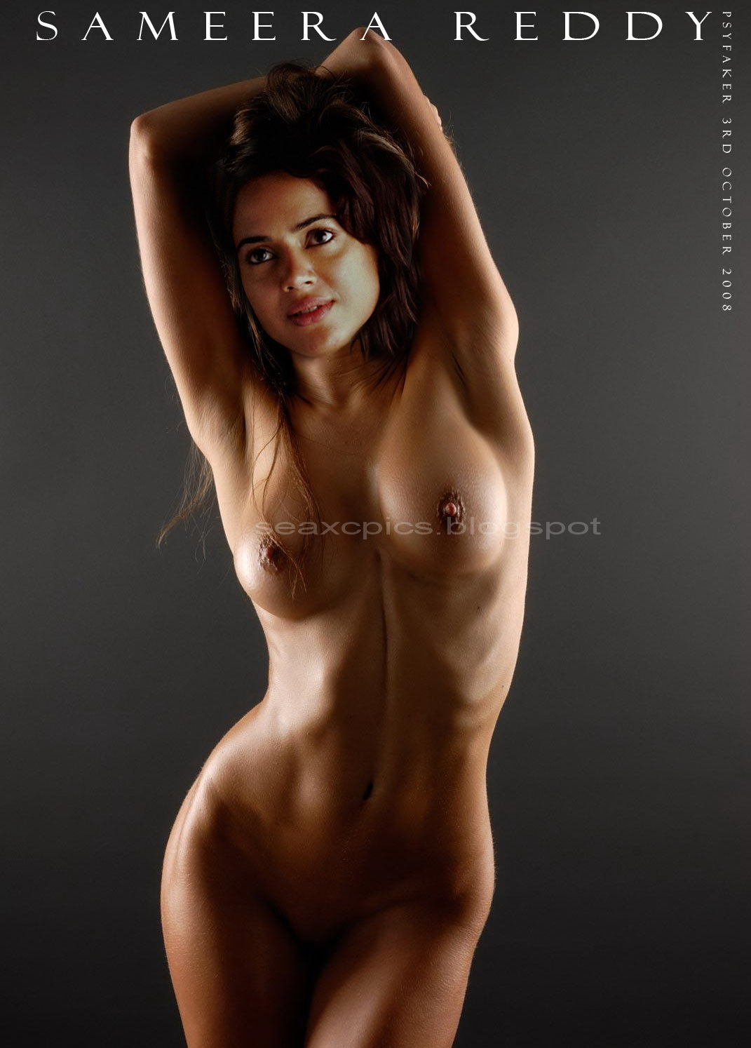 Welcome to Fakebook: Sameera Reddy Fake Nude