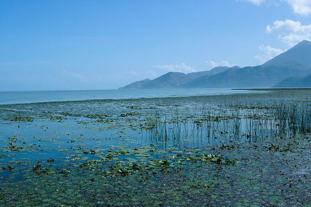 Kartki z podróży - Jezioro Szkoderskie