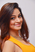 Actress Shilpi Sharma Hot Photo shoot-thumbnail-17