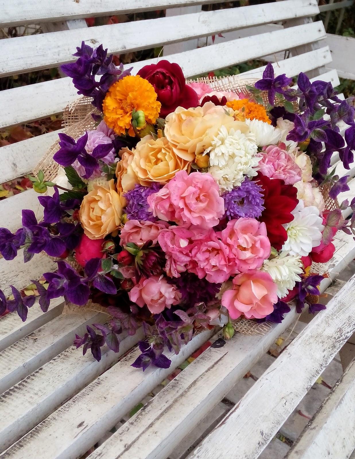 фото и название цветов цветущих с августа