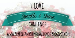 Sparkle and Shine Challenge Blog