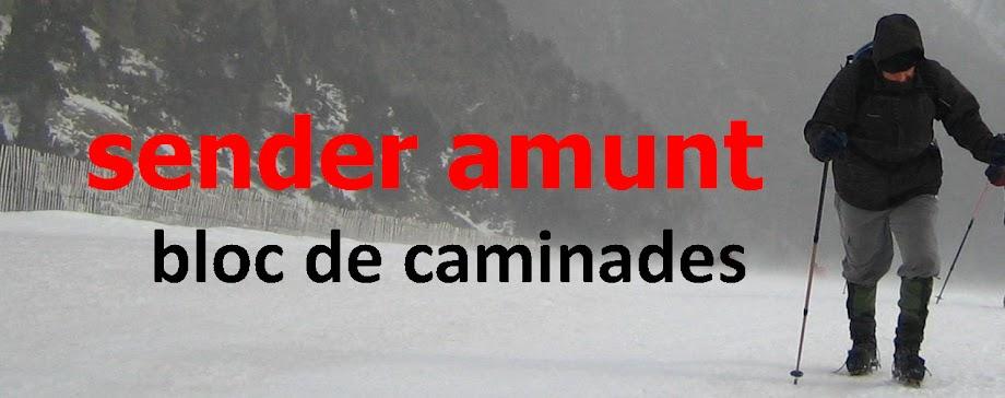 Sender Amunt. Bitàcola de caminades d'Iñaki Escudero