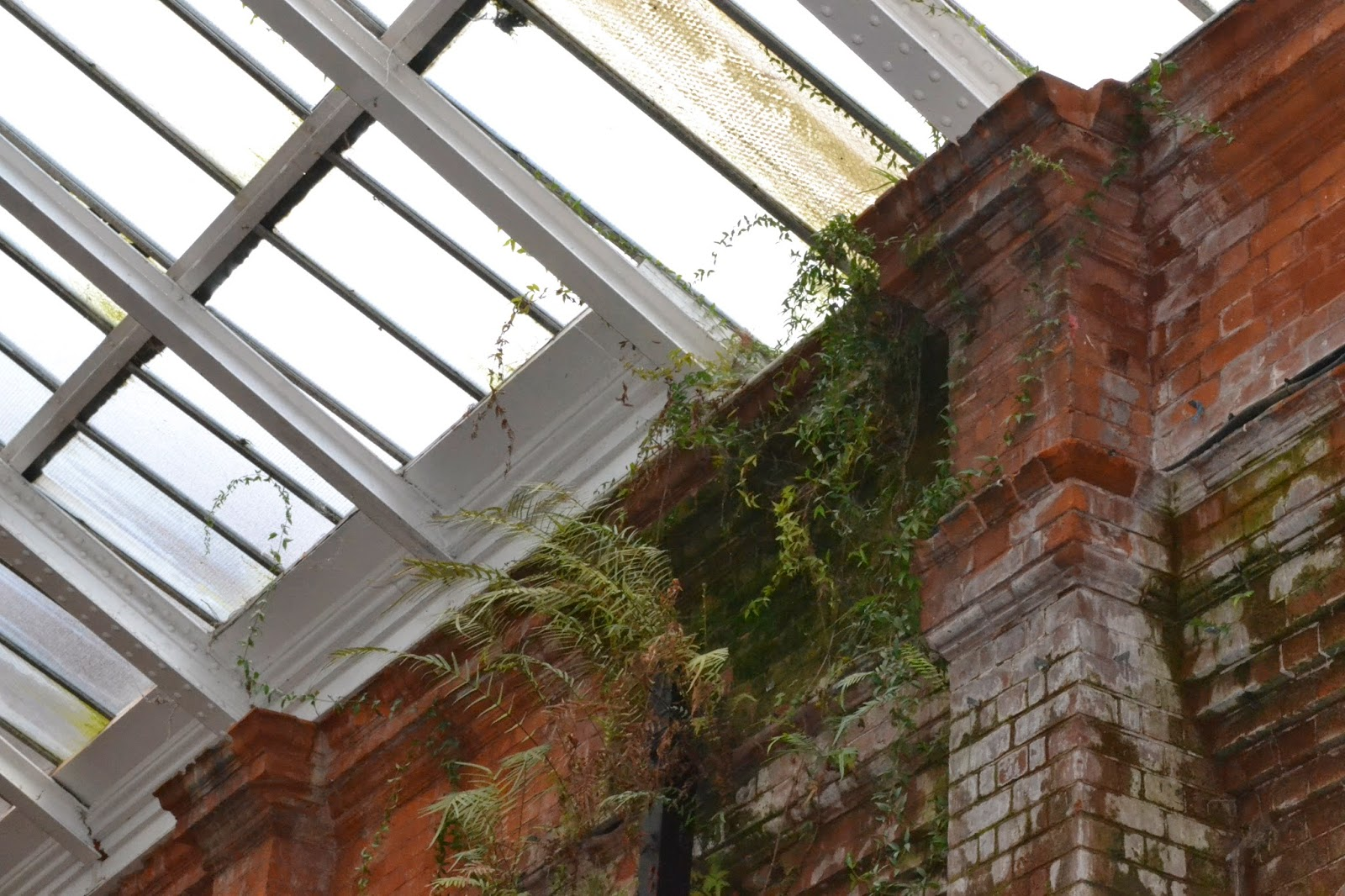 Plants reclaiming the old brickwork