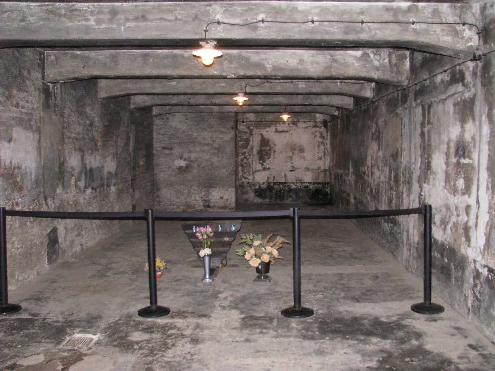 Auschwitz birkenau pour ne jamais oublier for Auschwitz chambre a gaz