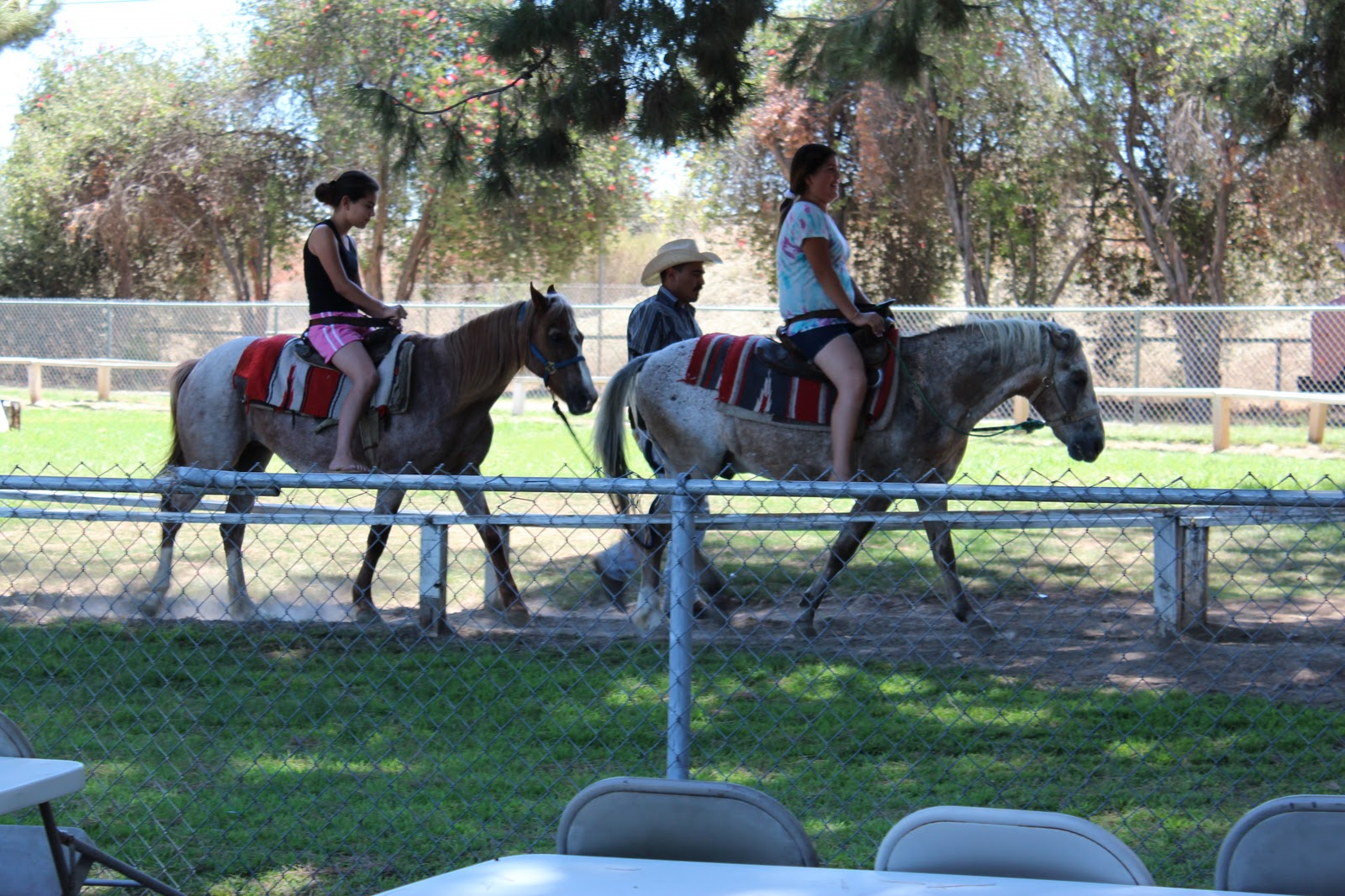 Montebello Barnyard Zoo Kids Birthday Party Pony Rides Los Angeles