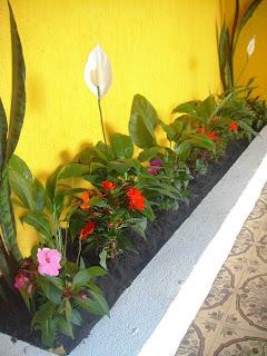 jardins para pequenos espaços