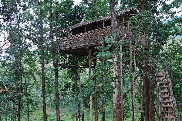 Top 10 Amazing Treehouses Somethin Bizarre