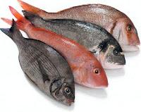 Cara Pastikan Kesegaran Ikan sebelum Beli