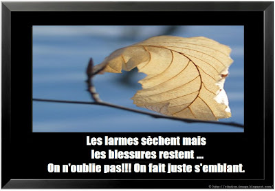 citation blessure en image