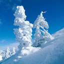 Snijeg, zima, Kanada download besplatne slike pozadine za mobitele