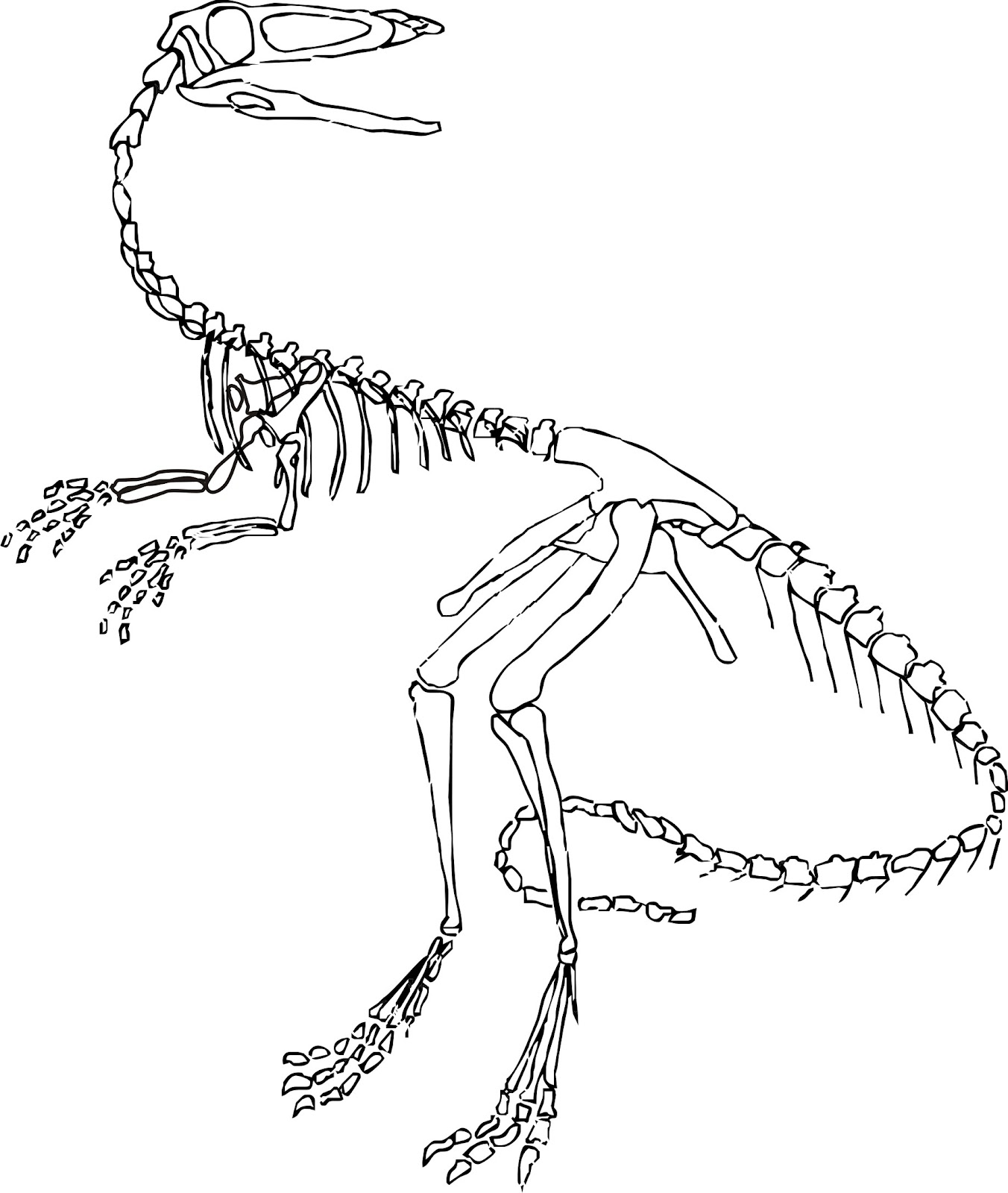 I 39 m working on a project revisited wip tuesday the for Printable dinosaur skeleton template