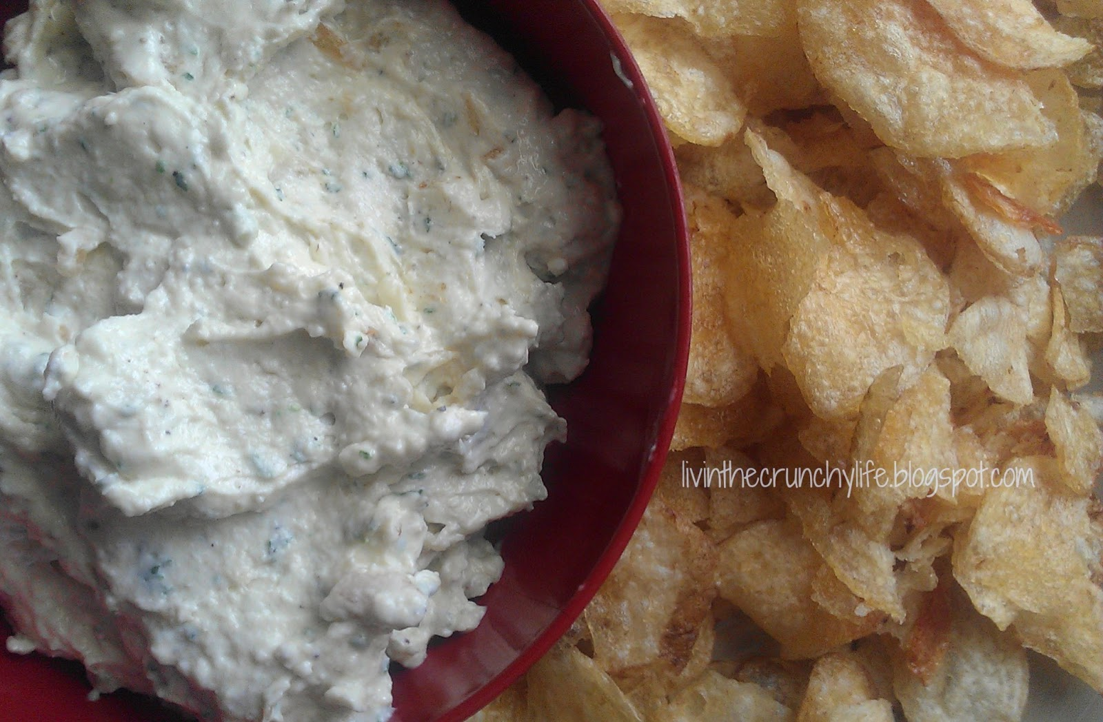 Homemade French Onion Dip, Copycat Heluva Good (with Dairy Free Option)