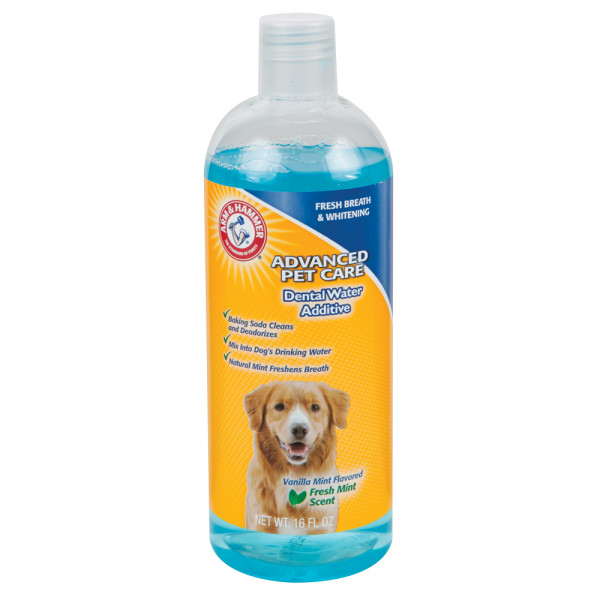What Can I Give My Dog For Really Bad Breath