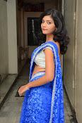 Bindhu latest sizzling saree pics-thumbnail-19
