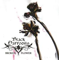 Black Daffodils - Broken Flower
